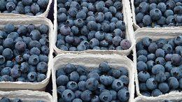 frutas Chile Turquía