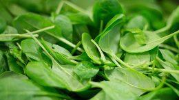 verduras y hortalizas reducen riesgo cataratas