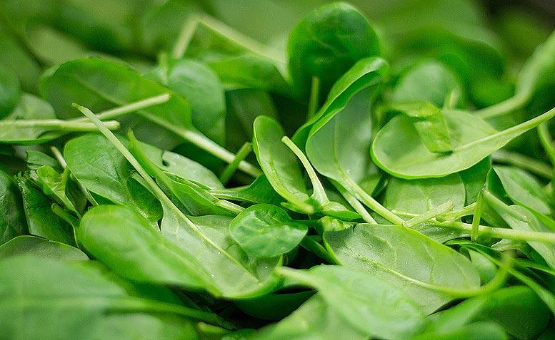 verduras hortalizas salud