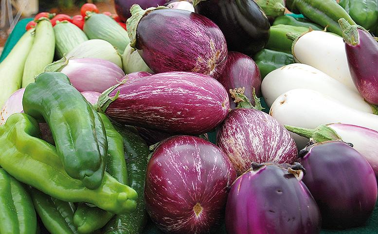 consumo frutas verduras hogares españoles