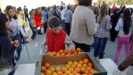 Comunitat Valenciana fomenta consumo fruta colegios
