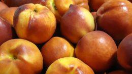 retiradas de fruta dulce