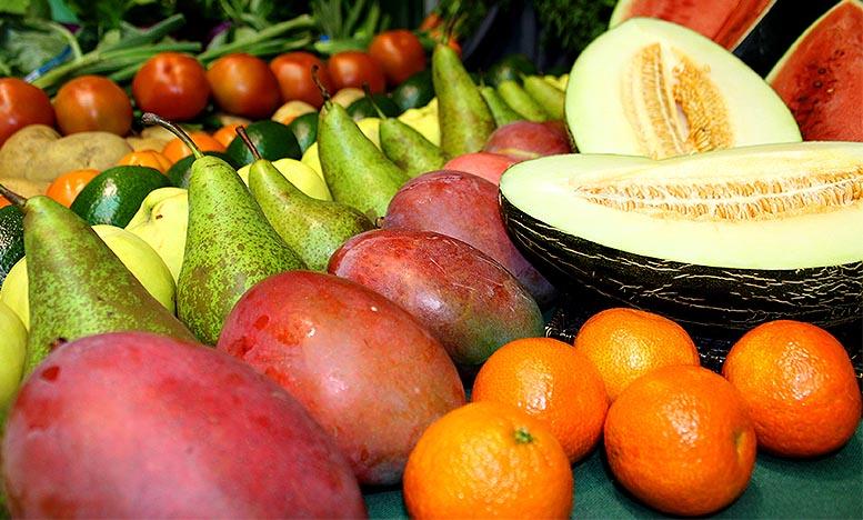 exportación española de frutas y hortalizas