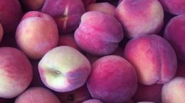 crisis de la fruta de hueso