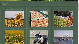 agricultura blog Andalucía
