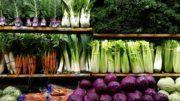 promoción productos agroalimentarios