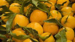 frutas españolas