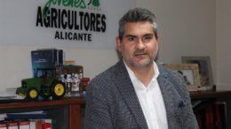 Asala Alicante