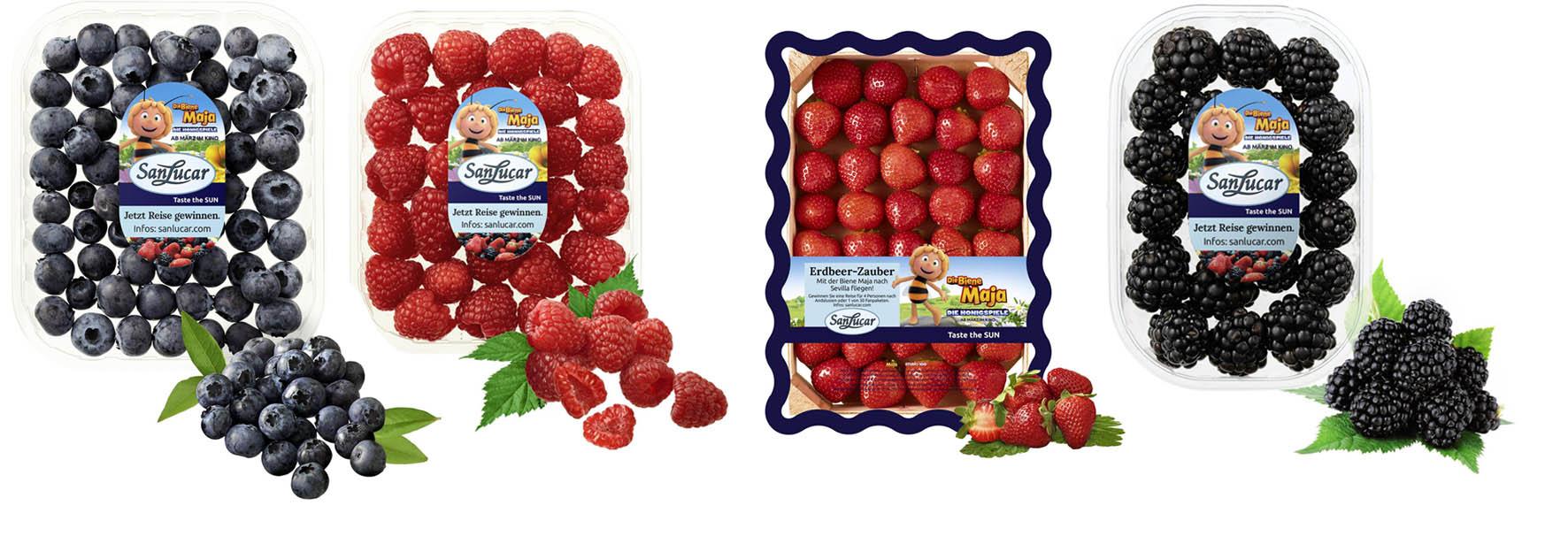 Berries SanLucar