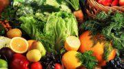 exportación agroalimentaria