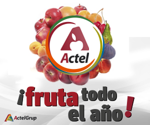Actel julio 2018