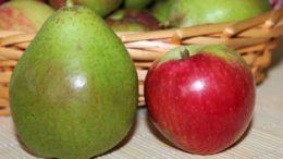 pera manzana cosecha 2018