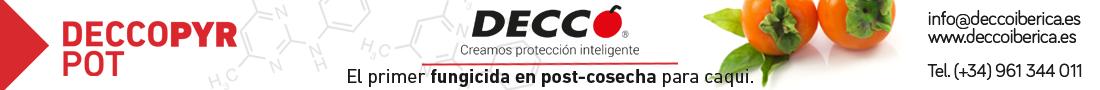DECCO CAQUI 2018