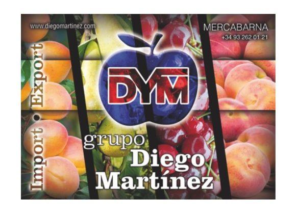 Grupo Diego Martínez