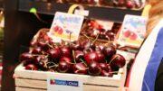 Frutas de Chile
