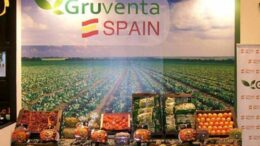 Gruventa en Fruit Logistica 2019