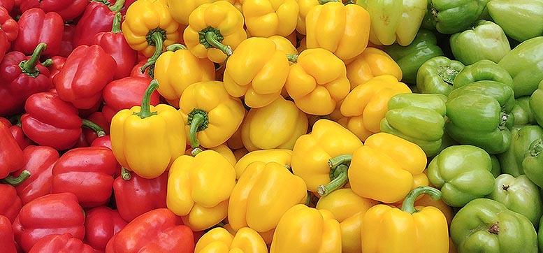 exportaciones hortofrutícolas Andalucía