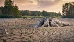 clima cambio climático