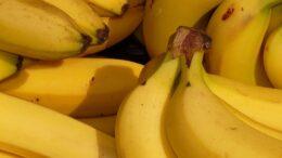 frutas y hortalizas españolas