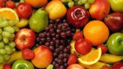 Exportación frutas y hortalizas