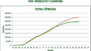 Campaña cítricola