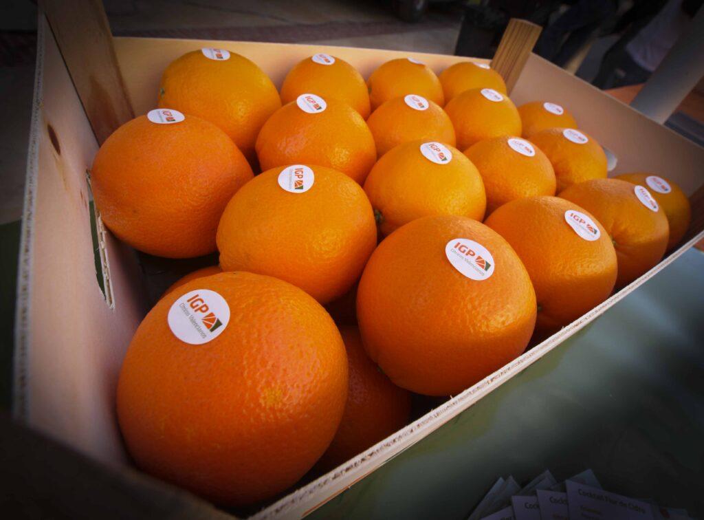 naranjas mercosur