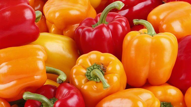 exportaciones de frutas y hortalizas