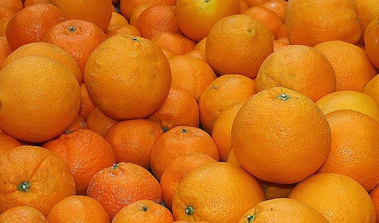 sector de frutas y hortalizas