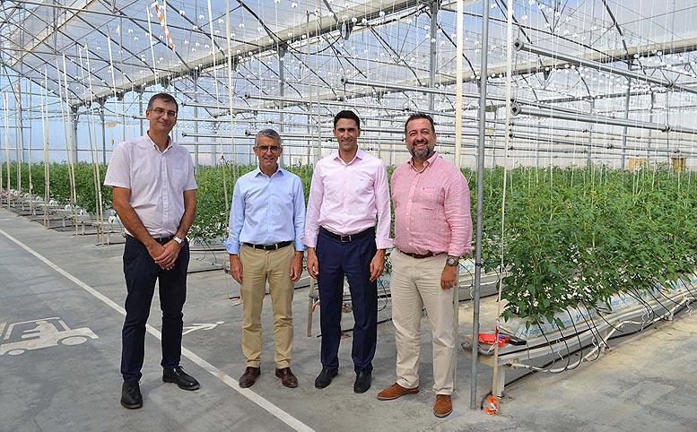 cultivos con iluminación artificial
