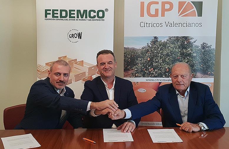 """Fedemco y la IGP """"Cítricos Valencianos"""""""