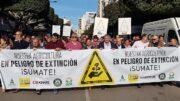 movilizaciones conjuntas en toda España