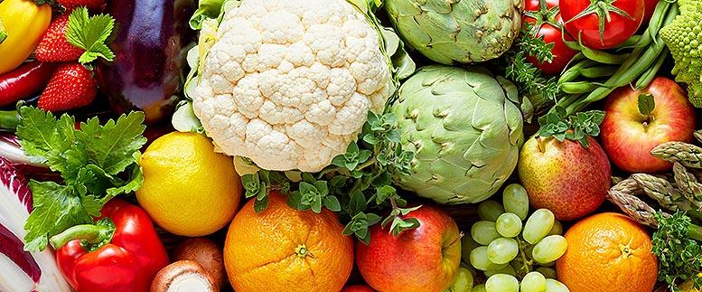 exportación de frutas y hortalizas