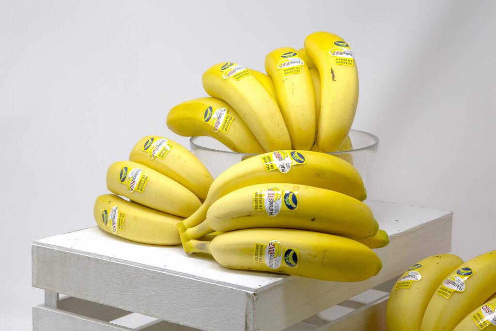 Plátanos Ruiz Apostamos a 15º
