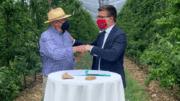 Carrefour acuerdo ciruela rosé