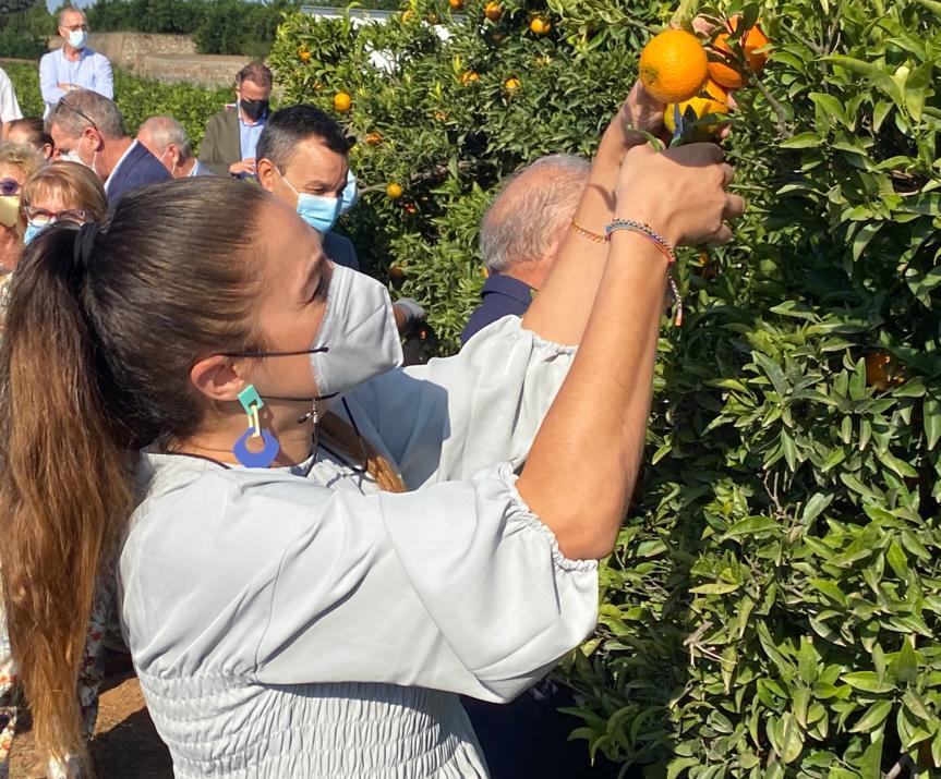 Mireia Mollà naranja